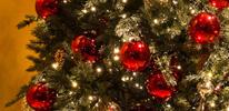2016 크리스마스 및 연말 새해 패키지 런칭 배너이벤트 이미지