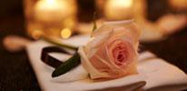 58층 일식당 슈치쿠의 사랑애 패키지 이미지